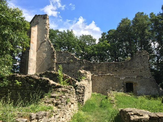 Ruins of the Pauline Monastery