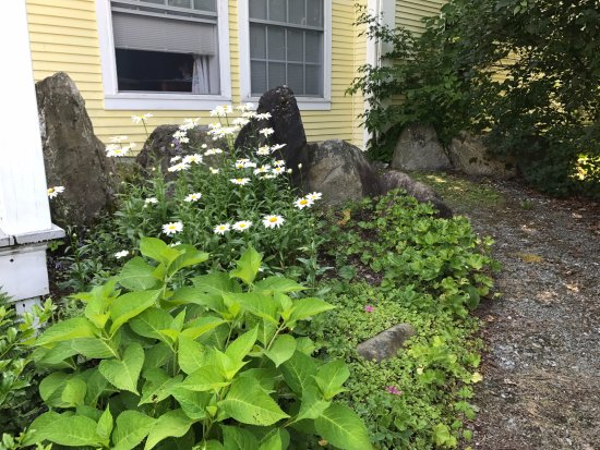 Hyde Park, VT: A little garden off of the Garden Room (which is handicap accessible!).
