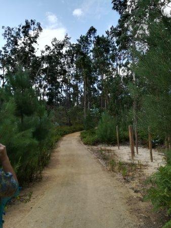 Monte Real, Portugal: IMG_20170720_102727_large.jpg