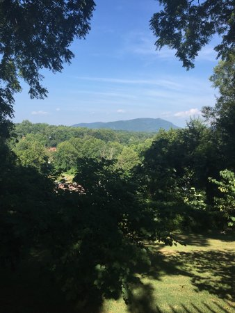 Biltmore Village Inn: View from the Pergola