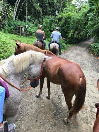 Star Mountain Horse Tours: Horse Tour