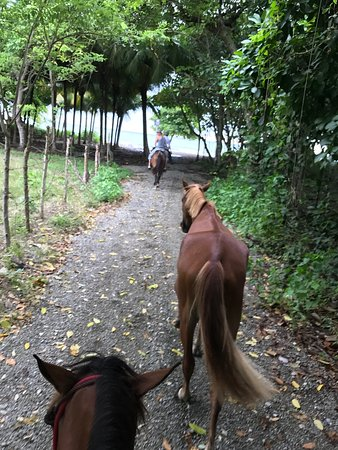 Star Mountain Horse Tours: Arriving at the beach
