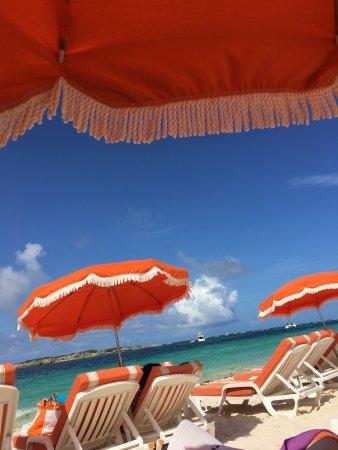 Orange Fever: photo1.jpg