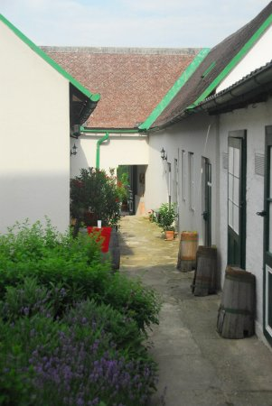 Kritzendorf, Austria: Eingang, Hauerhof 99