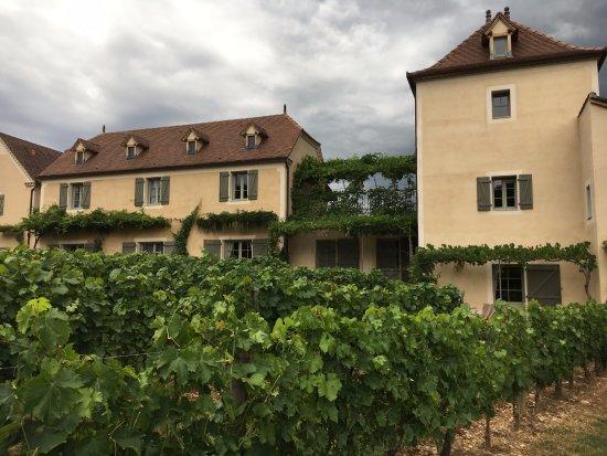 Tour-de-Faure, France: Back of Hotel