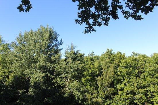 Raray, ฝรั่งเศส: vue depuis la terrase