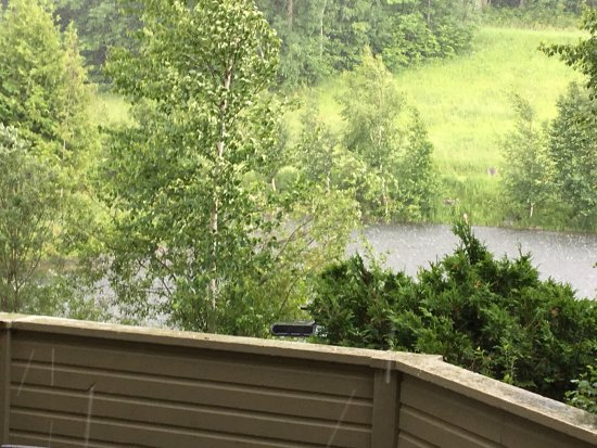 Calabogie, Canada: It was actually hailing at the time this was taken-- but great greenary.