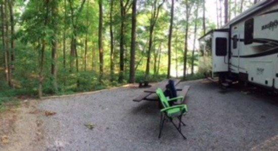 Shawnee National Forest: Campsite 14