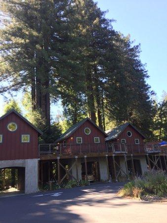 Creekside Inn & Resort Photo