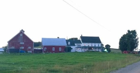 Danville, VT: View from the road of the farm
