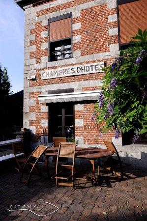 Sains du Nord, France: Et une magnifique glycine