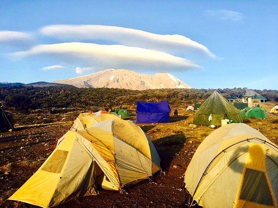 Kilimanjaro National Park, Tanzania: photo3.jpg