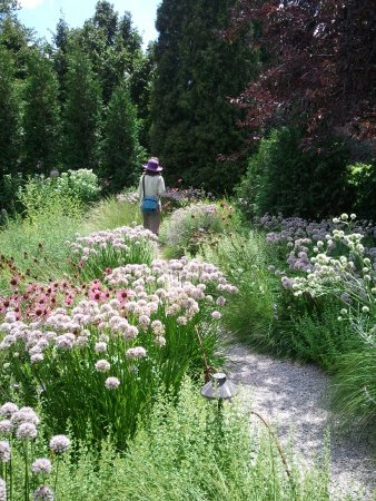 Olbrich Botanical Gardens Madison 2018 All You Need To Know Before You Go With Photos