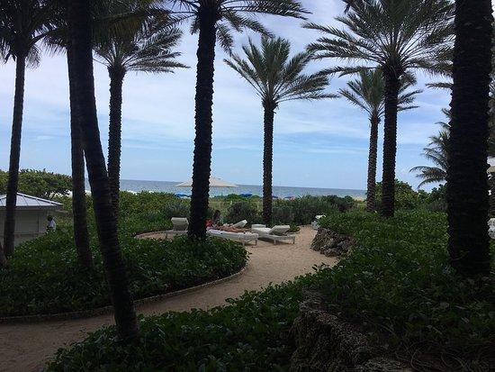 Surfside, FL: Buen spot