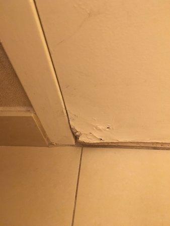 Skokie, IL: Rotting bathroom door.