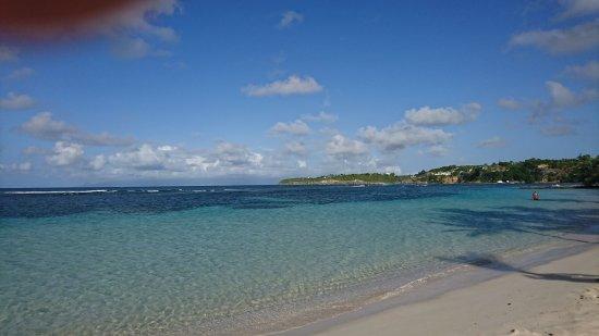 Sainte-Anne, Guadeloupe: DSC_0385_large.jpg