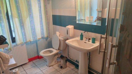 Hôtel Restaurant La Chaumière du Lac : Salle de bain chambre 2 lits simples 19 m²