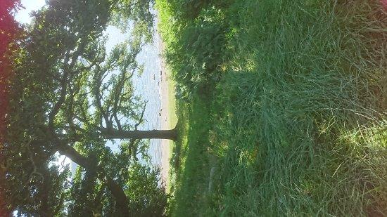 Ambleside, UK: DSC_1256_large.jpg