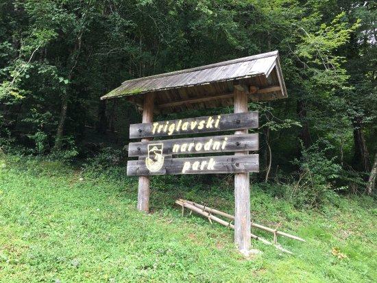 Tolmin Gorge: photo0.jpg