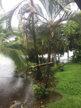 Boca Tapada, Коста-Рика: photo1.jpg
