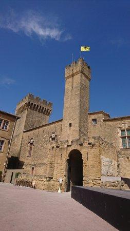 Ch teau de l 39 emp ri salon de provence 2017 ce qu 39 il faut savoir pour votre visite - Chateau salon de provence ...