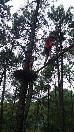 Province of Pontevedra, إسبانيا: Uno de los juegos de equilibrio del parque en el nivel 2