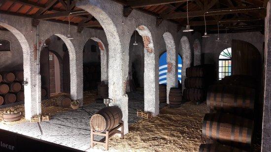 Centro de interpretación del vino y la sal: 20170726_101924_large.jpg