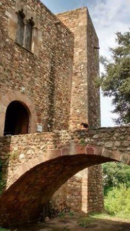 Parc de Vallparadis: Castell Cartoixa de Vallparadís