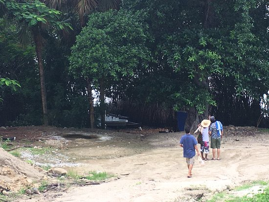 Laguna de Manialtepec : photo0.jpg