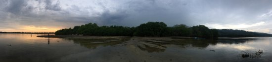 Laguna de Manialtepec : photo7.jpg