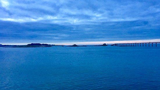 Ibis Roscoff Bord de Mer Photo