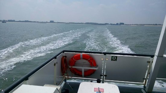 Westerschelde Ferry