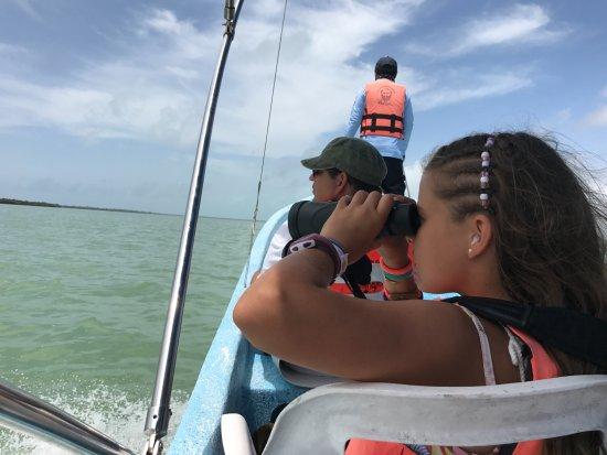 Yucatan, México: Unos minutos antes de encontrar a los delfines