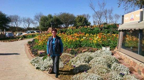 Hartbeespoort, Zuid-Afrika: @ Jasmyn Farmstall