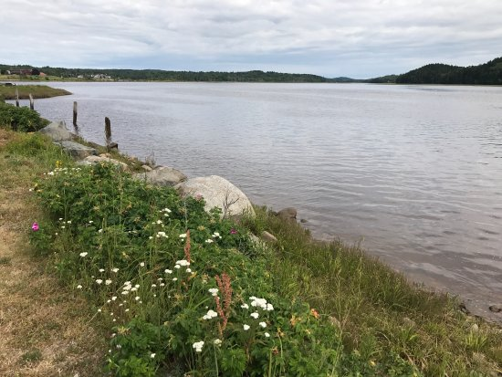 Machias, ME: This is the view of the river behind the restaurant - very pretty and peaceful, with picnic tabl