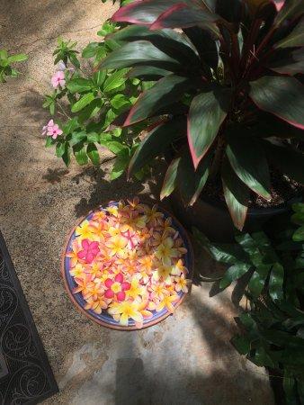 Anahola, Havai: photo2.jpg