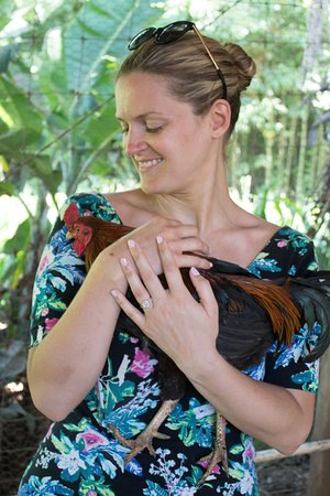 Haiku, HI: petting a chicken!