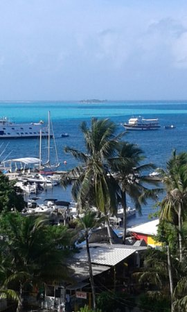 Sol caribe sea flower hotel desde s 450 san andr s for Sol caribe sea flower san andres