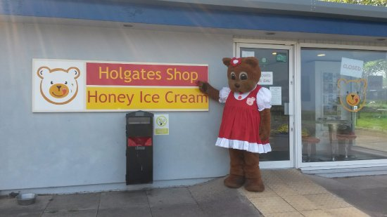Image result for holgates ice cream shop