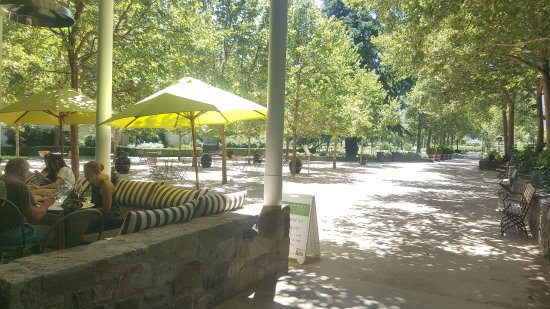 Rutherford, Καλιφόρνια: Just outside the entrance, lovely patio and walkways