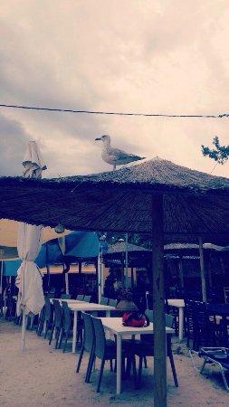 Rachoni, Grécia: photo1.jpg