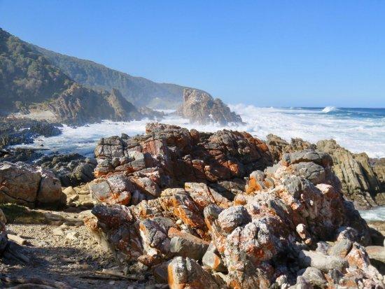 Tsitsikamma National Park, Güney Afrika: photo6.jpg