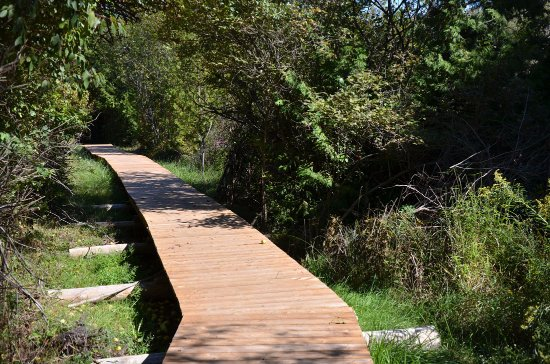 Clinton, Canadá: Boardwalk, Bannockburn Conservation Area, Varna, Ontario, Canada, between Bayfield and Brucefiel