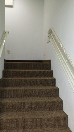Jonestown, PA: This stairway had mold growing out of the carpet