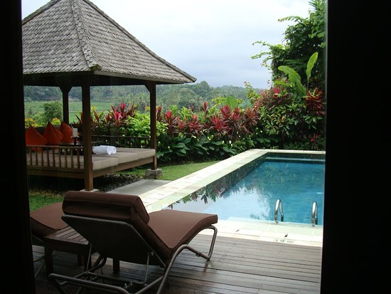 The Samaya Bali Ubud: Our private swimming pool and day bed