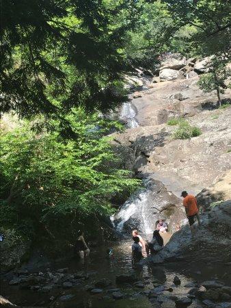 Catoctin Mountain Park Foto