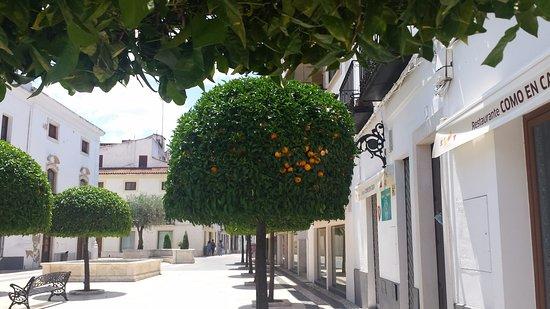 Olivenza, Spain: Cuidado com a laranja azeda