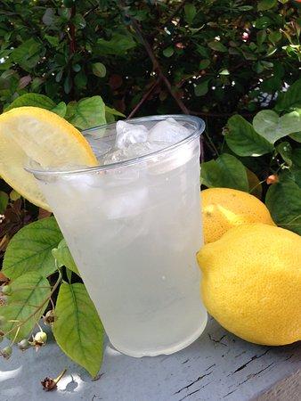 Egg Harbor, WI: Fresh squeezed lemonade!