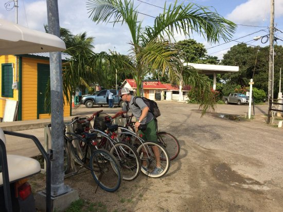 Plasencia, Belize : Park your bikes.