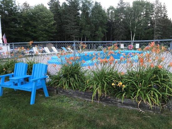 Belle Isle Motel: Heated pool